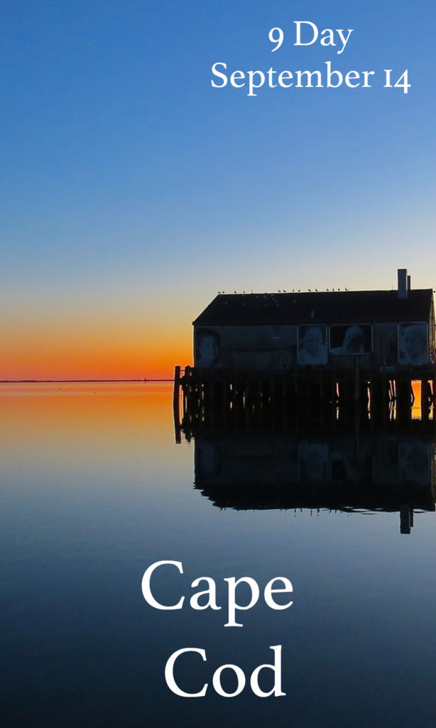 advertise trips to cape cod during the year